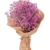 분홍안개꽃다발